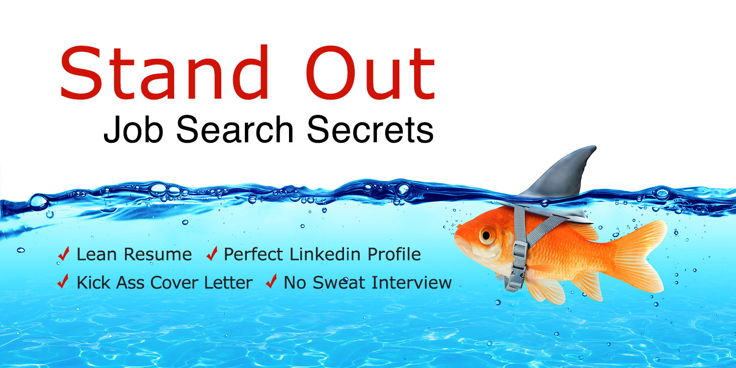 Stand Out Job Search Secrets